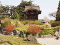 Kew Japanese garden with japonica - geograph.org.uk - 1220767.jpg