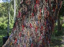 Killing Tree (15446480934)