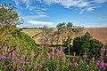 Kiplingcotes - panoramio.jpg