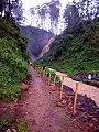 Kisiizi falls from a distance.jpg