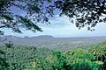 Knuckles Mountain Range in Kandy.jpg