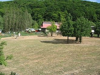 Košice Zoo - Zebra enclosure