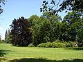 Kostelecký zámecký park (21).JPG