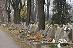 Krakow Military Cemetery,Graves of January Uprising veterans,1 Prandoty street,Krakow,Poland.jpg