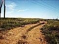 Krasnodons'kyi district, Luhans'ka oblast, Ukraine - panoramio (11).jpg