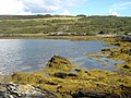 Kyle of Tongue Shore - geograph.org.uk - 956126.jpg