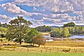 L'étang de Chabannes en période de sécheresse de fin d'été 2020 (3).jpg