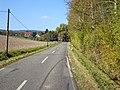 L3336 in Richtung Wüstefeld - panoramio.jpg