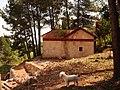 La Costa y el perro - panoramio.jpg