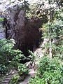 La Cueva del Guacharo.jpg