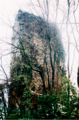 La Torre di Cocquio-Trevisago.png
