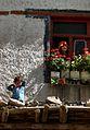 Ladakh (1352812167).jpg