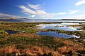 Lago Argentino u El Calafate - panoramio.jpg