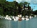 Lago Negro - Gramado - panoramio (3).jpg
