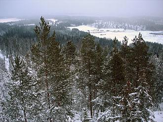 Korpilahti - Landscape of Korpilahti seen from the top of mount Oravivuori