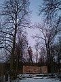 Lanshino, Moskovskaya oblast', Russia, 142281 - panoramio (5).jpg