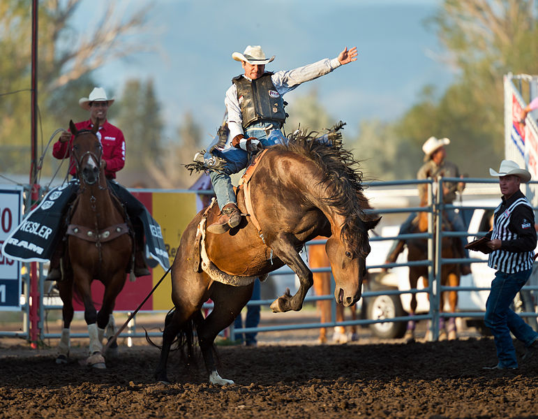 File:Last Chance Stampede and Fair 2012 (7674126828).jpg