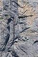Lauterbrunnen 29.07.2009 10-34-52.JPG