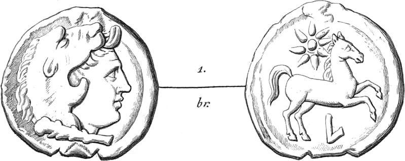 File:Le monete di Luceria Classe II - 1.jpg
