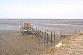 Les nouveaux carrelets sur ponton d'Esnandes après la tempête Xynthia (1).JPG
