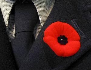 Memorial Day (Newfoundland and Labrador) - Poppy worn on lapel