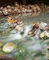Little Creek with naturally heated water at the hot spring area in Taipei.jpg