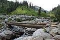 Log bridges in Kalam Valley.jpg