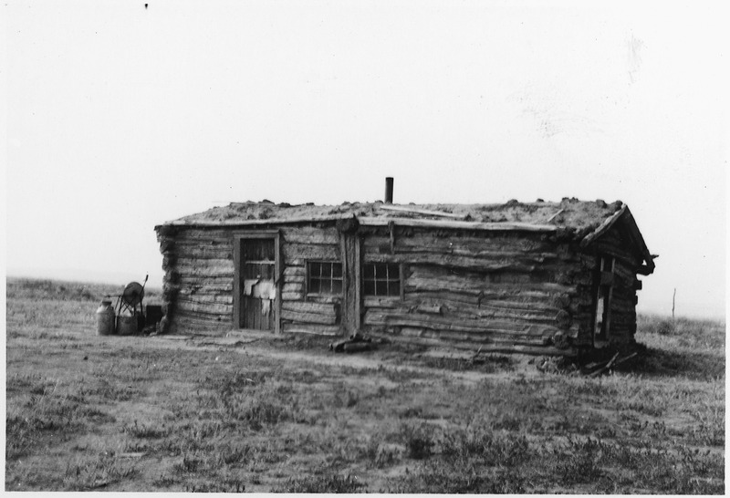 File:Log house with a sod roof - NARA - 285876.tif