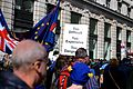 London Brexit pro-EU protest March 25 2017 22.jpg