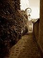 Longjumeau - Rue de Savigny - 20130823 (1).jpg