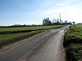 Looking south along Banningham Road - geograph.org.uk - 683993.jpg