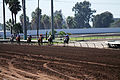 Los Alamitos Sept 2014 IMG 6717 (15317499412).jpg