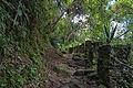 Los Venados, Waraira Repano National Park - Parque Nacional Waraira Repano (10751982843).jpg