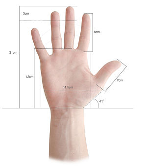 Louis Bolk - Hand Meassurements based on the Louis Bolk's fetallization theory