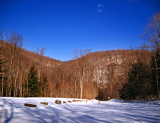Sullivan County, Pennsylvania - Loyalsock State Forest in Hillsgrove Township