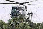 Lynx - Fly Navy Day 2016 (26908319853).jpg