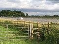 M53 Motorway, Storeton - geograph.org.uk - 199137.jpg