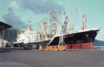 MS Frankfurt, Santa Thomas de Castillo, Guatemala 1970-71.png