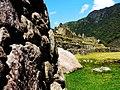 Machu Picchu (Peru) (14907114809).jpg