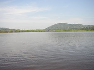 Malay folklore - A view of Tasik Chini in Pahang, where a dragon known as Naga Seri Gumum is believed to dwell.