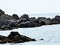 Mar - panoramio (6).jpg