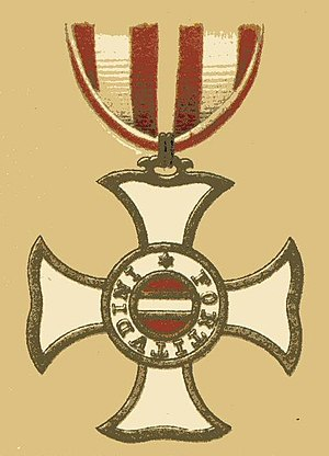 Friedrich Freiherr von Hotze - Badge of the Order of Maria Theresa. Hotze received this award for his actions in the Würzburg campaign.