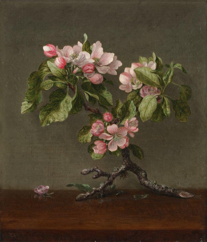 Мартин Джонсон Хид - Яблоневые цветы - 411.1915 - Кливлендский художественный музей.