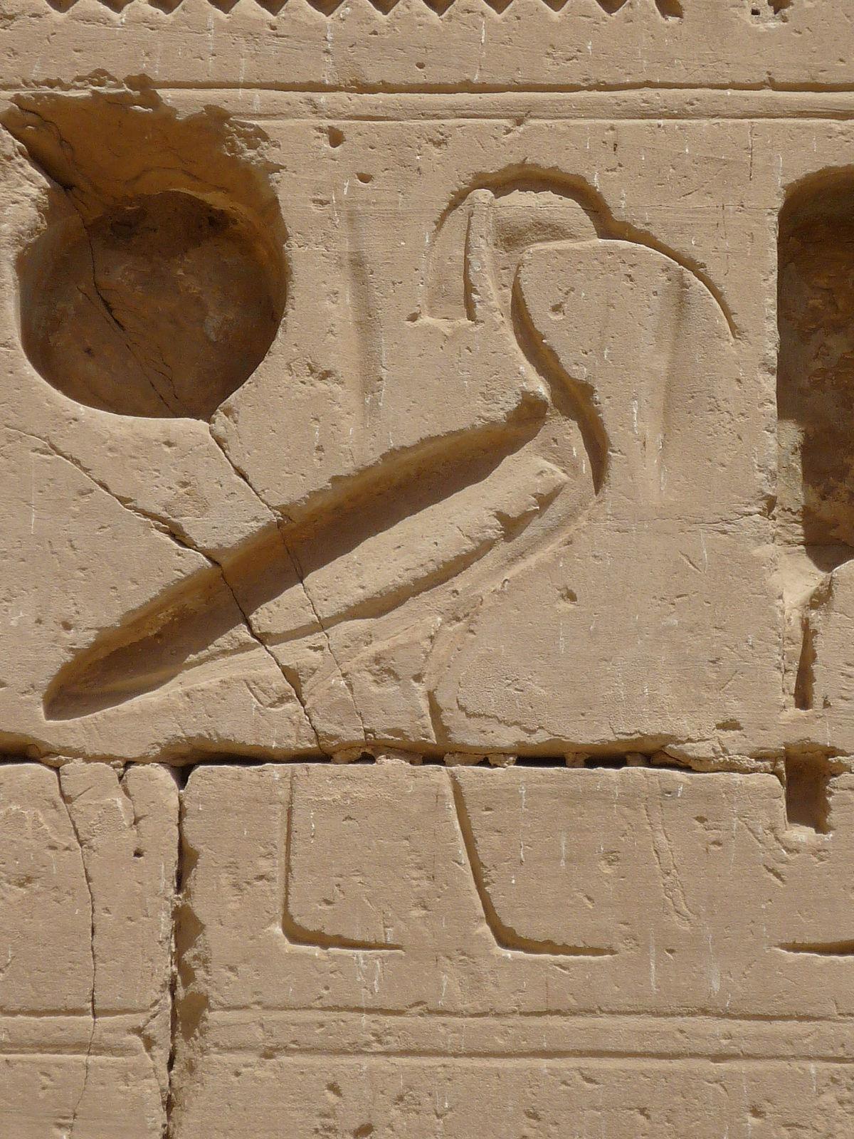 Schiebetã Ren Kã Che anima nella religione dell antico egitto
