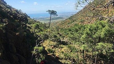 Mediterraneo desde Arroyo infierno.jpg