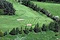 Melrose Golf Course - geograph.org.uk - 1041687.jpg