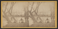 Men in boats, Poughkeepsie, N.Y, by Slee Bros..png