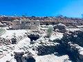 Meymand ShahreBabak11.jpg