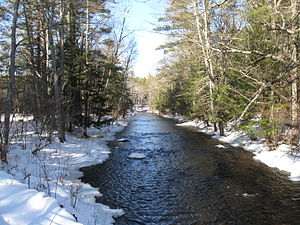 Middle Branch Piscataquog River - The Middle Branch near its mouth