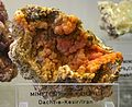 Mimetesit mit Kampylit - Mineralogisches Museum Bonn (7276).jpg